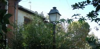 jardin obligation et plantation