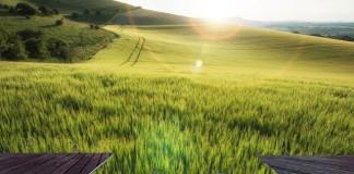 nature sol et etude terrain