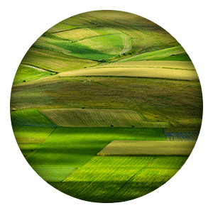 offre_terrain